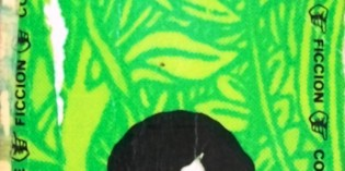 Hojarasca